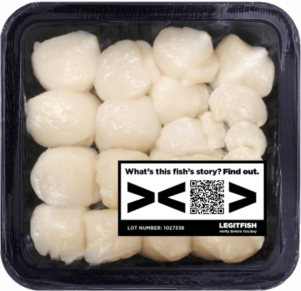 Scallops with QR code